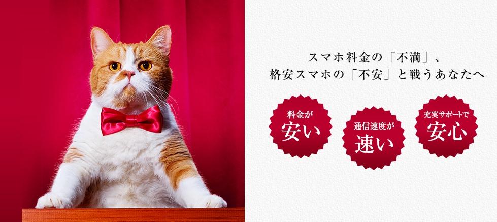Y!mobileオンラインストア